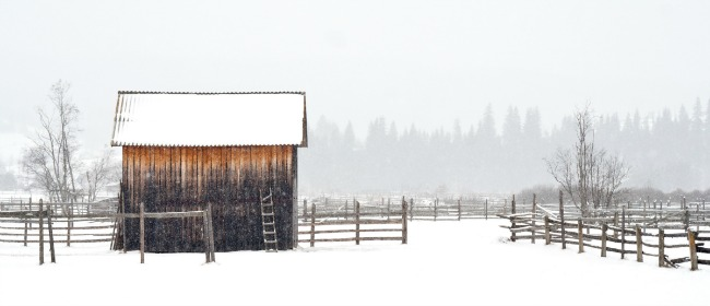Snow Barn Fence